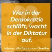 Der Zitate-Zerstörer (2): War Goethe etwa schon Antifaschist? - WELT