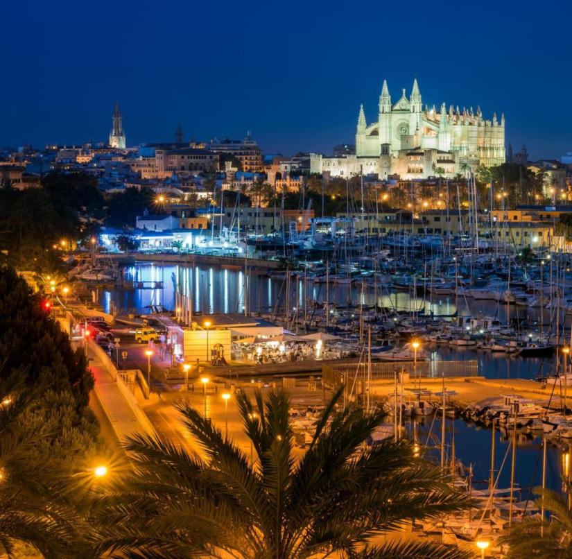 Palma de Mallorca at night (Balearic Islands, Spain)