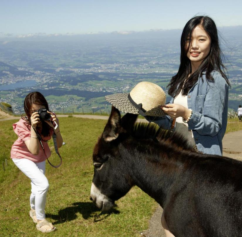 Switzerland 2019: South Koreans pose for photos on the Rigi with straw hats and donkeys