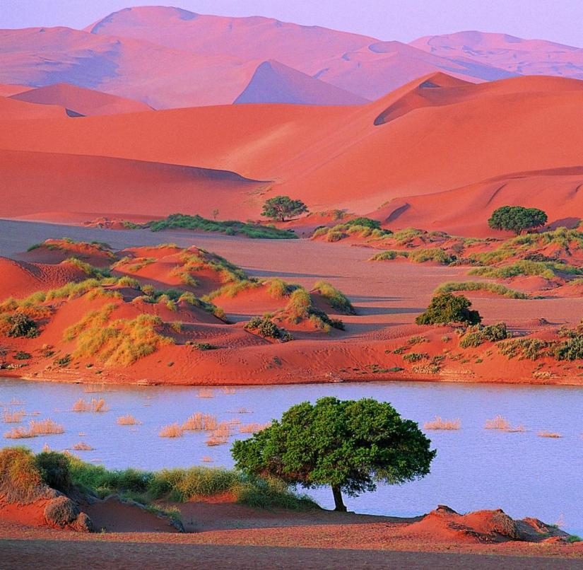 In the Sossusvlei area in the Namib desert, tourists can climb an 80 meter high dune