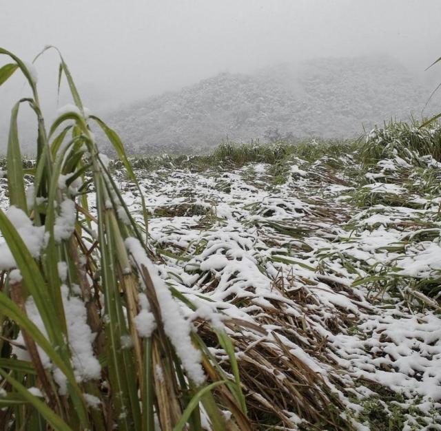 Kältewelle in Südamerika