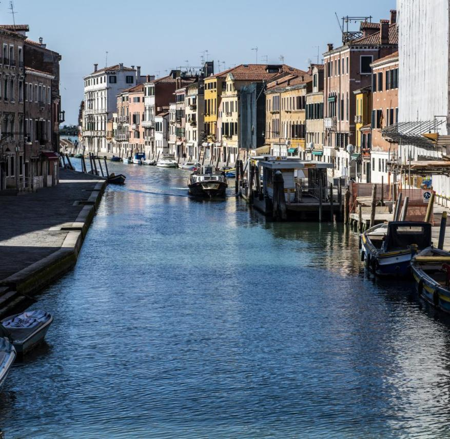 Without the traffic of the tourist gondolas, the water in Venice's canals is now crystal clear