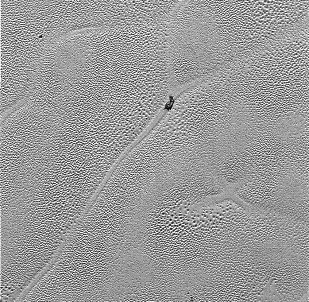 Zwergplanet Plutos Oberflache Und Monde Erforscht