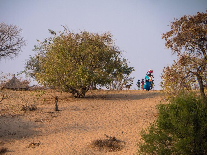 Namibia Okawango-1090635