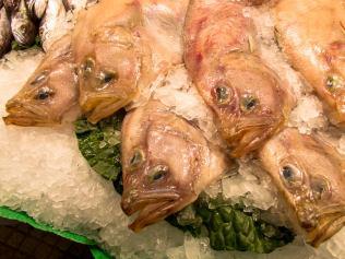 Barcelona Fischmarkt