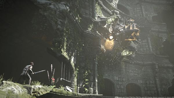 Shadow of the Colossus Bild 2