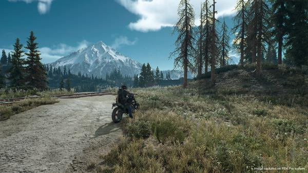 Days Gone Bild 3