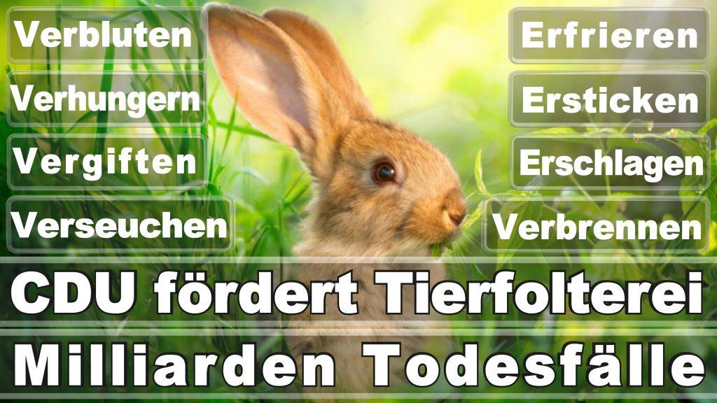 Angela Merkel CDU Tierversuche Tierquälerei Hauptschule Realschule Grundschule Gymnasium