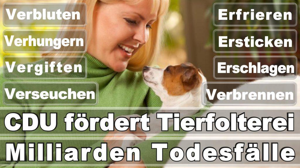 Bundestagswahl 2017 Umfrage Stimmzettel Angela Merkel CDU Tierversuche Tierquälerei Hauptschule Realschule Grundschule Gymnasium (3)