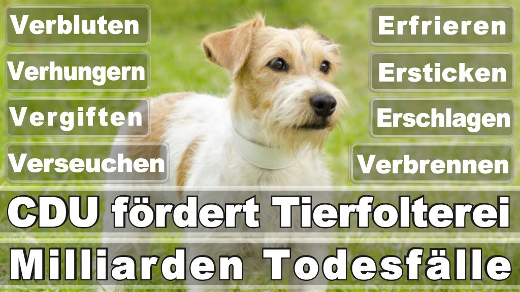 Angela Merkel CDU Tierversuche Tierquälerei Hauptschule Realschule Grundschule Gymnasium (33)