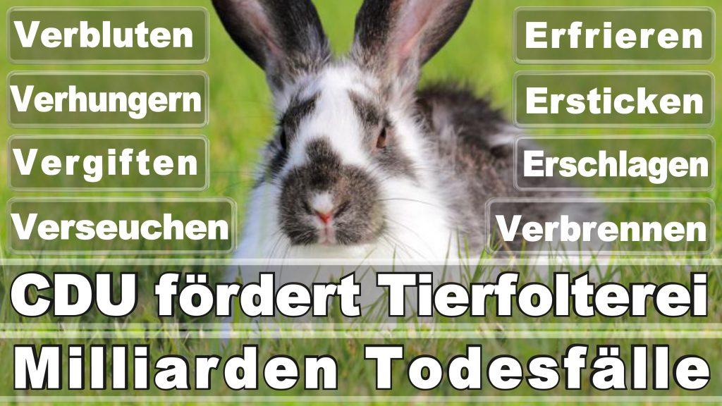Angela Merkel CDU Tierversuche Tierquälerei Hauptschule Realschule Grundschule Gymnasium (43)