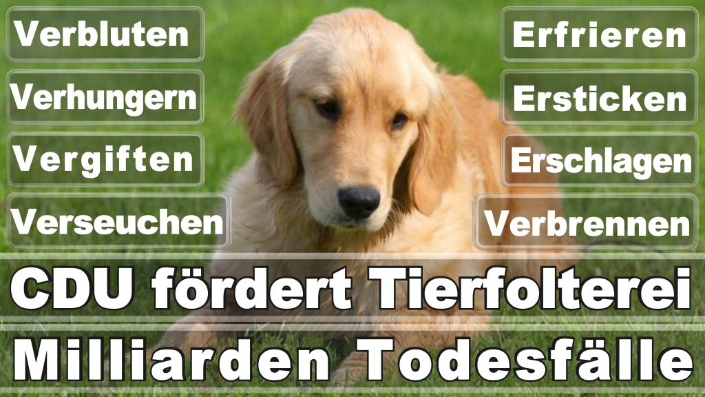 Angela Merkel CDU Tierversuche Tierquälerei Hauptschule Realschule Grundschule Gymnasium (44)