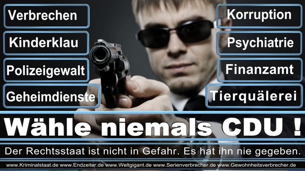 Bundestagswahl 2017 CDU SPD FDP AfD NPD Piratenpartei Wahlplakat Wahlplakate (16)