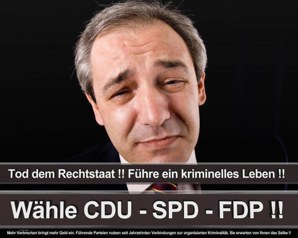 Bundestagswahl 2017 Wahlplakate CDU SPD Angela Merkel Frauke Petry AfD (22)