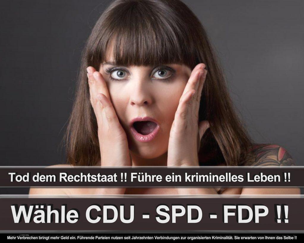 Bundestagswahl 2017 Wahlplakate CDU SPD Angela Merkel Frauke Petry AfD (26)