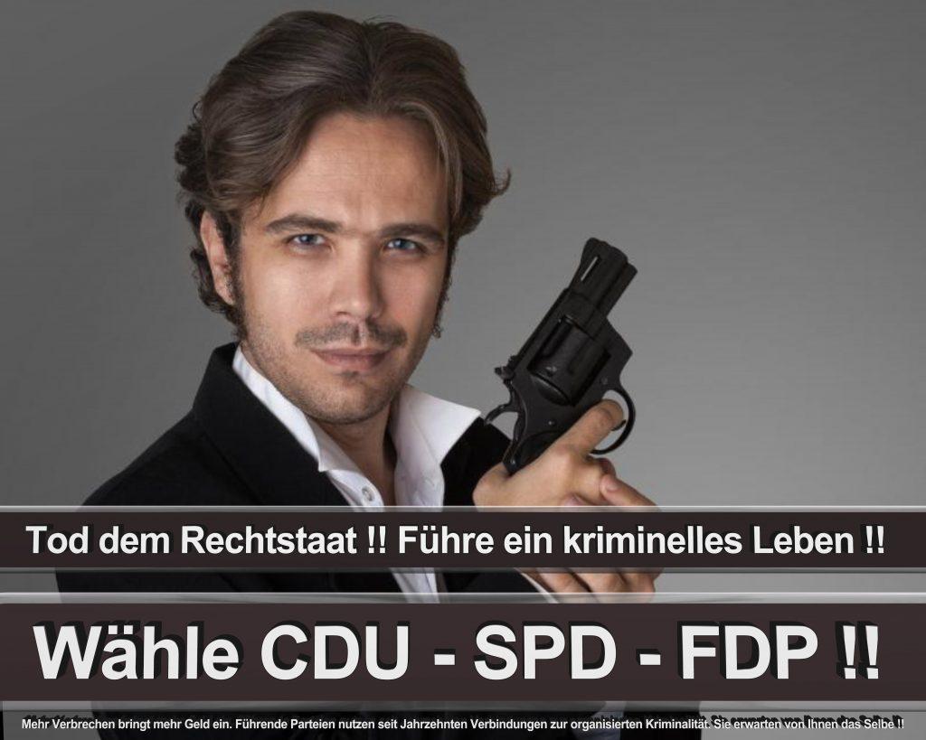 Bundestagswahl 2017 Wahlplakate CDU SPD Angela Merkel Frauke Petry AfD (27)