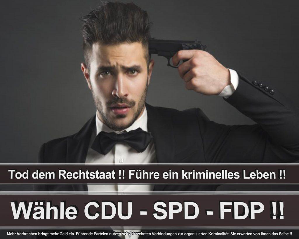 Bundestagswahl 2017 Wahlplakate CDU SPD Angela Merkel Frauke Petry AfD (29)