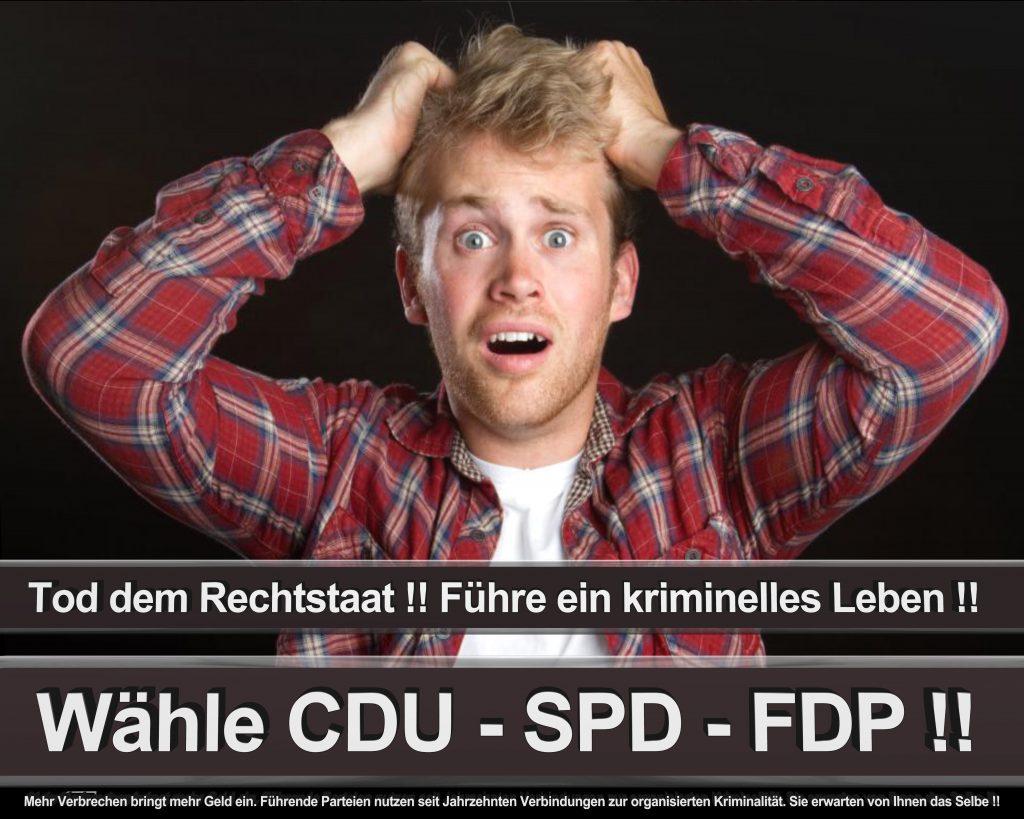 Bundestagswahl 2017 Wahlplakate CDU SPD Angela Merkel Frauke Petry AfD (30)