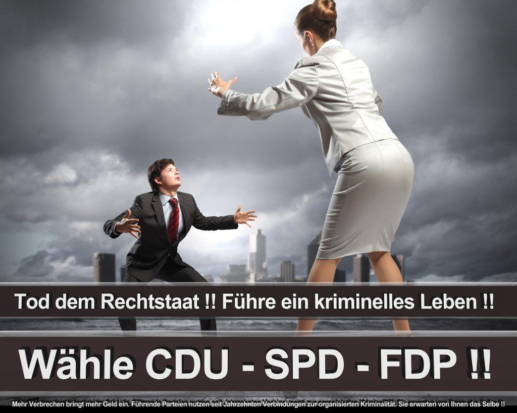 Bundestagswahl 2017 Wahlplakate CDU SPD Angela Merkel Frauke Petry AfD (47)