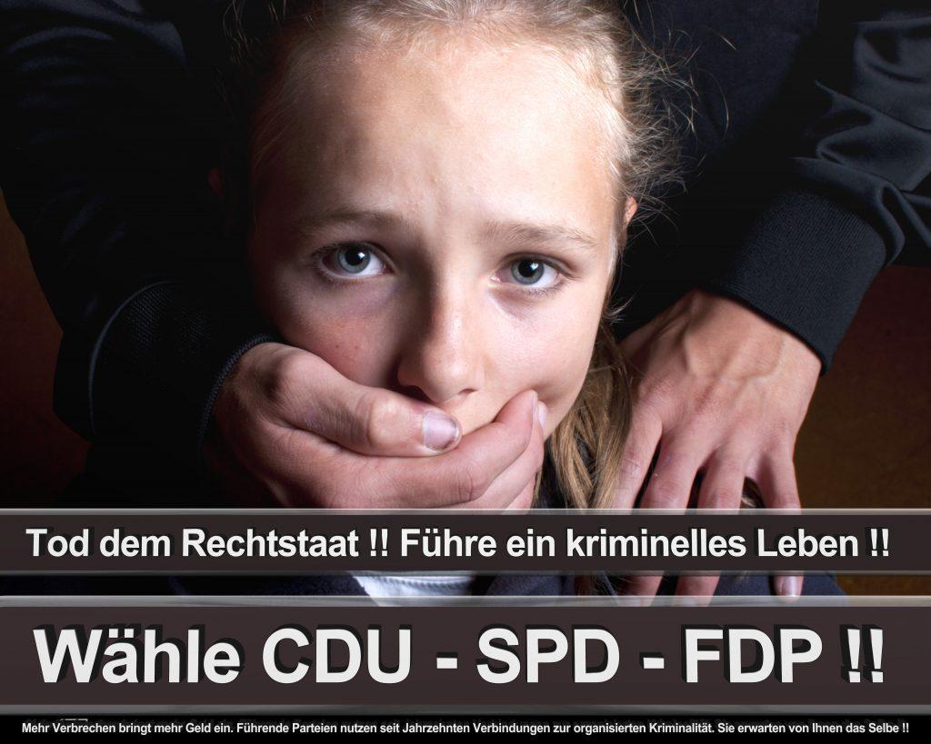 Bundestagswahl 2017 Wahlplakate CDU SPD Angela Merkel Frauke Petry AfD (53)