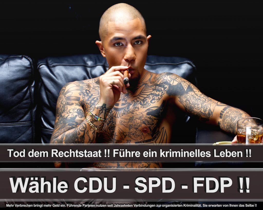 Bundestagswahl 2017 Wahlplakate CDU SPD Angela Merkel Frauke Petry AfD (58)