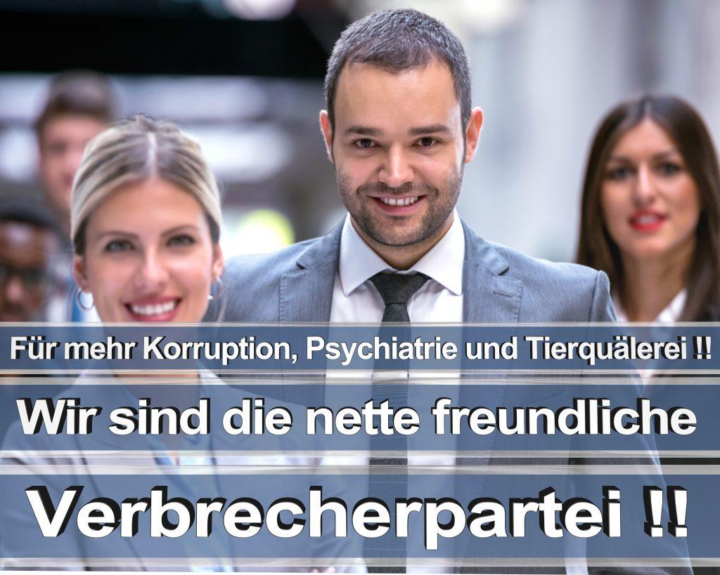 Bundestagswahl 2017 Wahlplakate CDU SPD Angela Merkel Frauke Petry AfD RTL ZDF ARD ARTE (6)