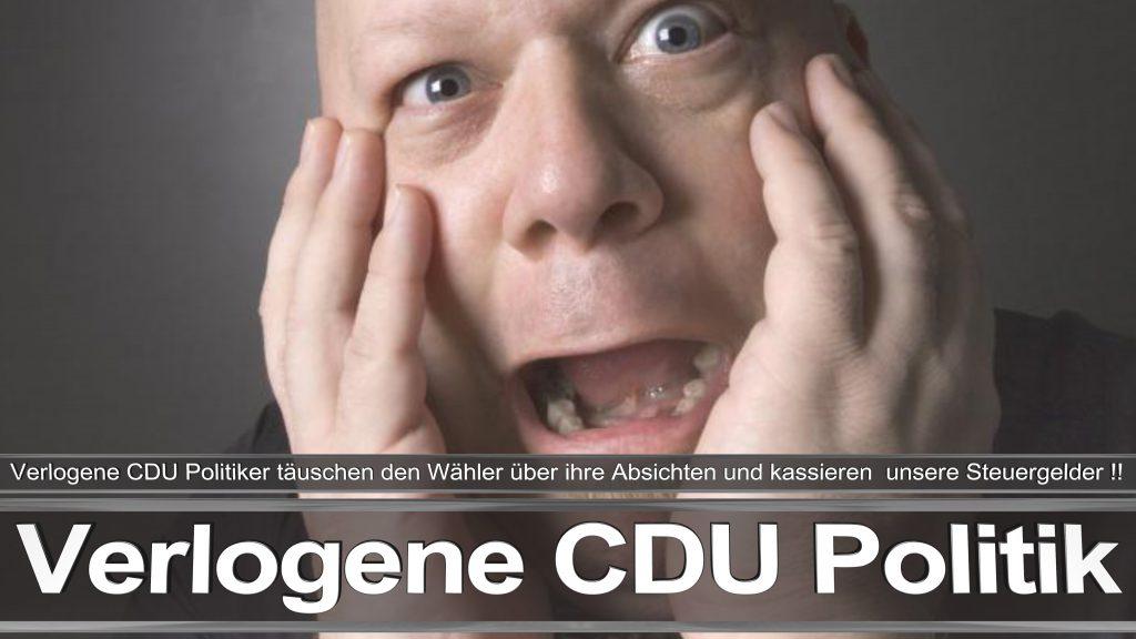 Bundestagswahl 2017 CDU Angela Merkel Frauke Petry AfD Termin Berlin Hamburg (25)