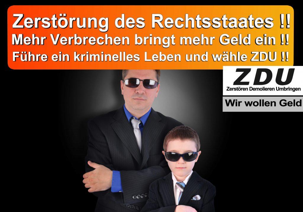 Bundestagswahl 2017 CDU SPD AfD Wahlplakat Angela Merkel CDU CSU (12)