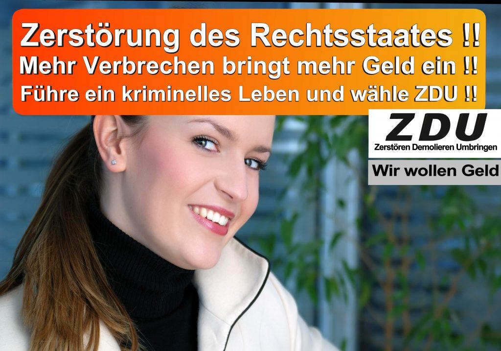 Bundestagswahl 2017 CDU SPD AfD Wahlplakat Angela Merkel CDU CSU (17)