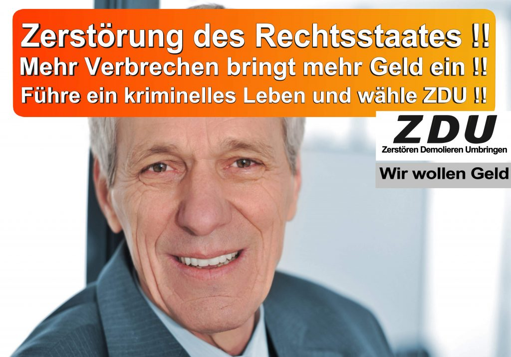 Bundestagswahl 2017 CDU SPD AfD Wahlplakat Angela Merkel CDU CSU (18)