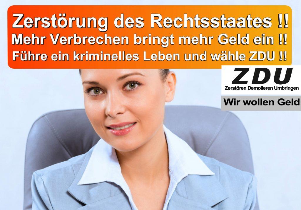 Bundestagswahl 2017 CDU SPD AfD Wahlplakat Bundestagswahl 2017 Umfrage Stimmzettel Angela Merkel CDU CSU (2)