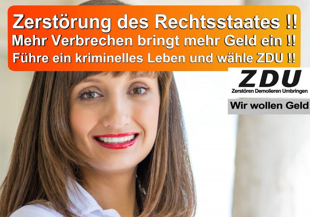 Bundestagswahl 2017 CDU SPD AfD Wahlplakat Bundestagswahl 2017 Umfrage Stimmzettel Angela Merkel CDU CSU (3)