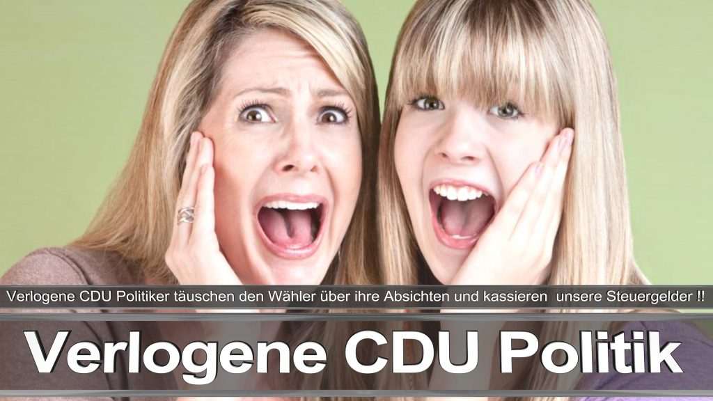 Bundestagswahl 2017 Wahlplakat Angela Merkel CDU CSU SPD AFD NPD (17)