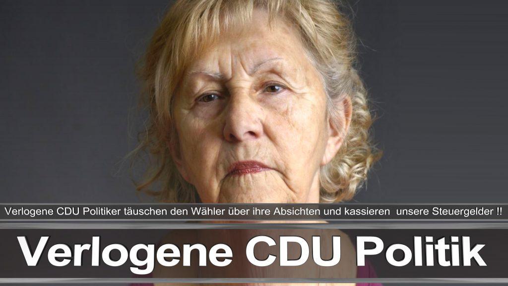 Bundestagswahl 2017 Wahlplakat Angela Merkel CDU CSU SPD AFD NPD (23)