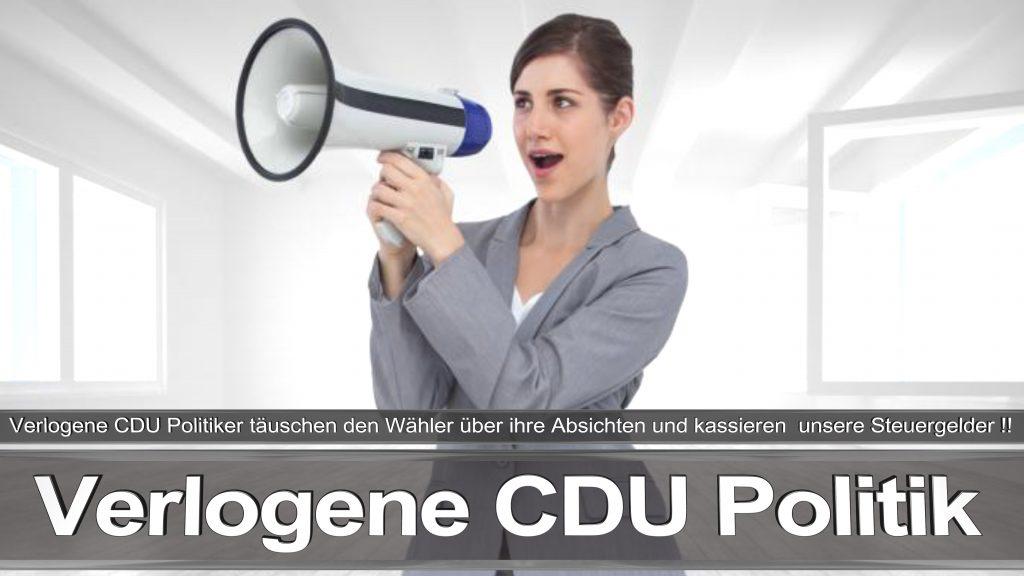 Bundestagswahl 2017 Wahlplakat Bundestagswahl 2017 Umfrage Stimmzettel Angela Merkel CDU CSU SPD AFD NPD (30)