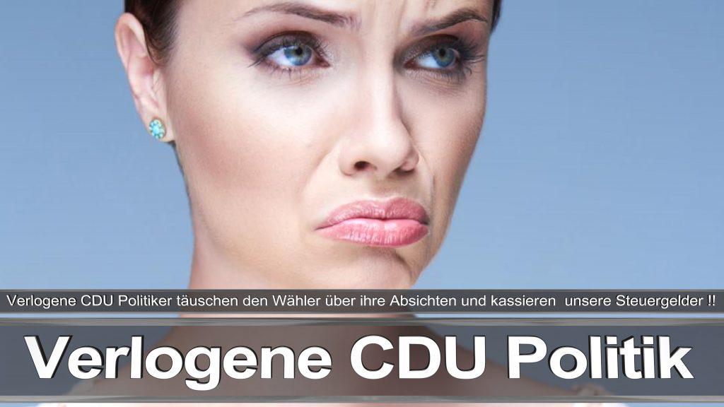 Bundestagswahl 2017 Wahlplakat Angela Merkel CDU CSU SPD AFD NPD (31)