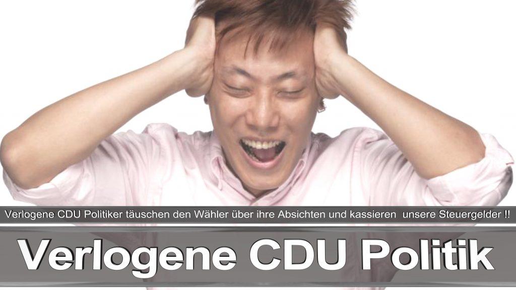 Bundestagswahl 2017 Wahlplakat Bundestagswahl, 2017, Umfrage, Stimmzettel, Angela Merkel CDU CSU SPD AFD NPD (8)
