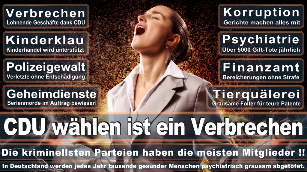 CDU Wahlplakate 2017 Angela Merkel Kundgebung Interview Europawahl CDU SPD FDP AFD NPD (11)