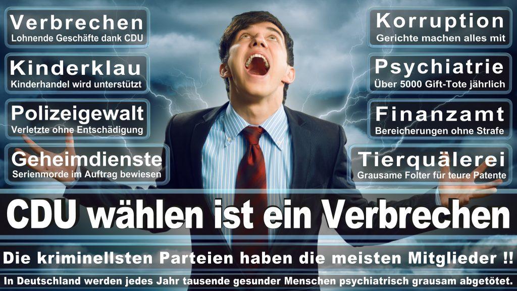 CDU Wahlplakate 2017 Angela Merkel Kundgebung Interview Europawahl CDU SPD FDP AFD NPD (21)
