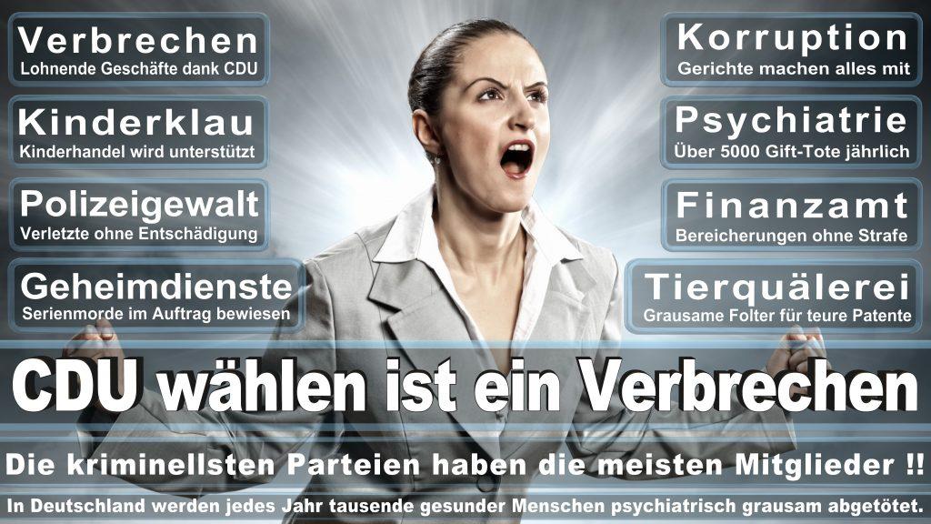 CDU Wahlplakate 2017 Angela Merkel Kundgebung Interview Europawahl CDU SPD FDP AFD NPD (3)