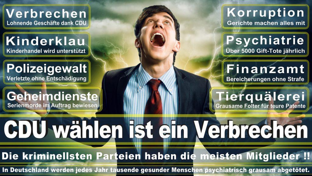 CDU Wahlplakate 2017 Angela Merkel Kundgebung Interview Europawahl CDU SPD FDP AFD NPD (9)