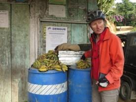 diese Bananen ?