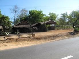 Häuser mit Blätterdach