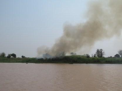 Schon in Thailand oft gesehen, brennende Felder, Wälder, Straßenränder