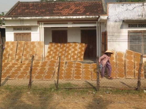 Reispapierfladen für z.B. Frühlingsrollen