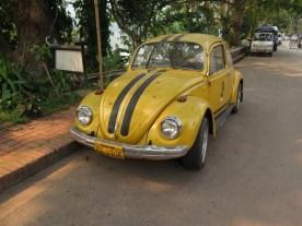 Käfer auch in Luang Prabang