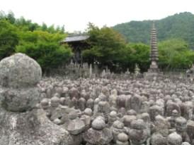 8000 alte Buddhastatuen; keiner weiß wann, von wem und für wen sie gemacht wurden