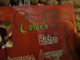 Loroco, schmeckt wie Brokoli, Senf und grüner Spargel