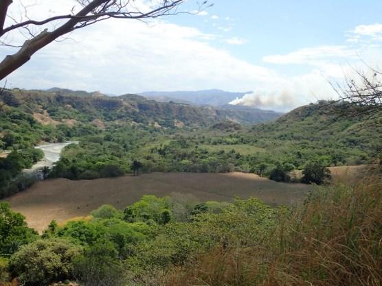 Landschaft mit Waldbrand