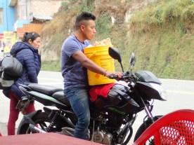 Suppenhuhntransport auf Moped